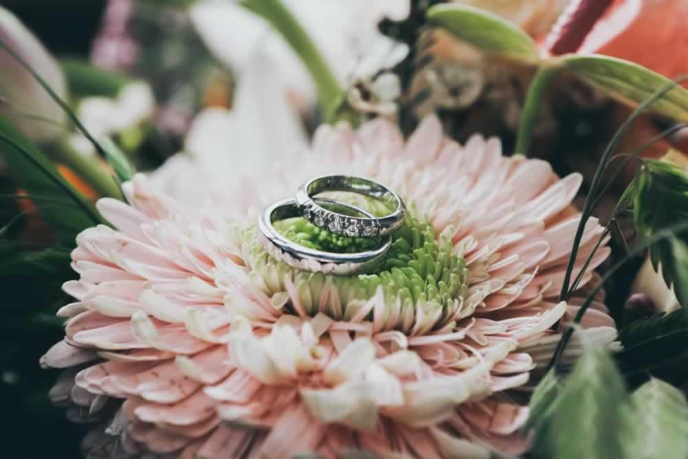 pldca-hall-flower-rings